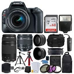 Canon EOS Rebel SL2 DSLR Camera + EF-S 18-55mm IS STM + EF 7