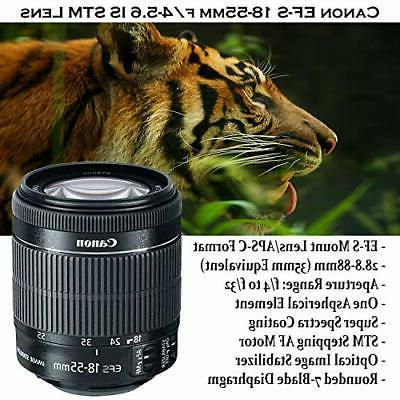 Canon Rebel T7i Lenses and