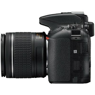 Nikon D5600 w/ AF-P 70-300mm SLD