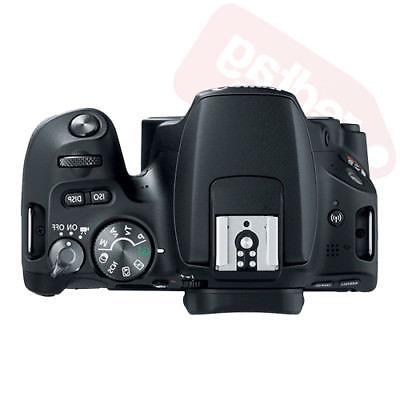 Canon EOS Rebel + Bundle