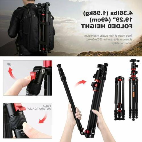 """Camera K&F Concept Head 72"""" for"""