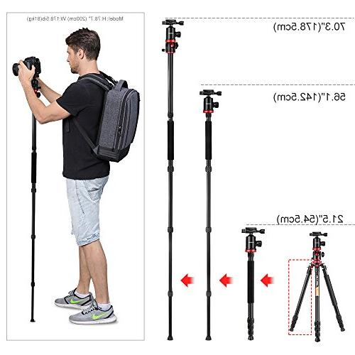 K&F DSLR Camera Inch Portable 4 Section Professional with Head Compatible Canon Nikon Sony