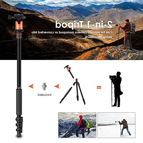 and Lightweight with Head, Tripod for DSLR, for OSMO, Ideal Vlog, Travel and