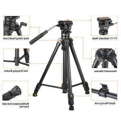 ZOMEI VT111 Professional Head Tripod For DSLR Camera Camcorder DV
