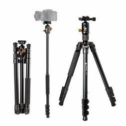 Q550 Camera Tripod with Fluid Ball Head 360 Rotation DSLR SL
