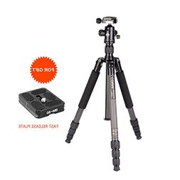 "COMAN TN256C Professional Tripod Carbon Fiber 61"" Including"